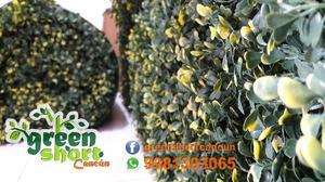 Venta de Muros verdes en Cancun