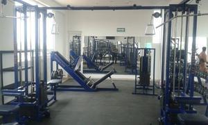 Agarres para poleas de gym posot class for Poleas para gimnasio