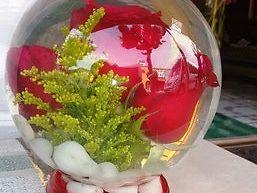 Hermoso Arreglo floral natural dentro de burbuja con agua
