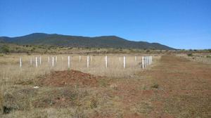 Terrenos Joyas de la Huerta, La Estancia.