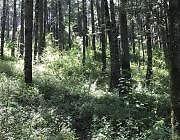 Terreno en Mineral del Chico, Ideal para desarrollo