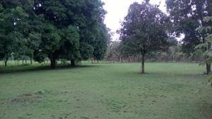 Rancho en venta de 16 hectareas a 10 minutos de