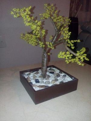 Arbolito bonsai