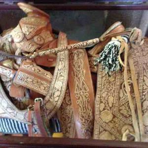Monturas Charras Pitiadas Auténticas De Francisco Escalera