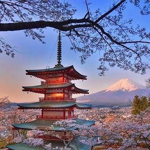 Servicios -Japones