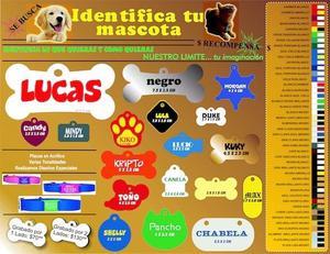 Placas para mascota