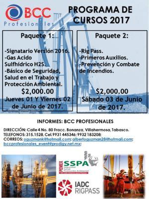 PAQUETE DE SIGNATARIO Y RIG PASS