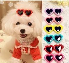 Broche Para Perro Lentes Accesorios Ropa Mascotas