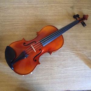Clases de violín particulares