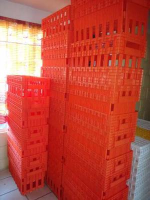 5 Cajas Para Transportar Huevos