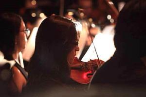 Clases de violín a domicilio.