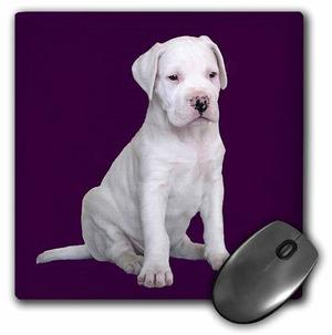 Argentine Dogo Puppy - Mouse Pad, 8 By 8 Inches (mp__1)