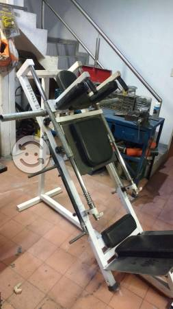 Hack sentadilla gym