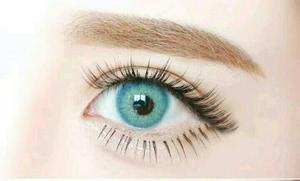 Pupilentes Anuales +estuche+ Envio Gratis!! Mejor Q Solotica
