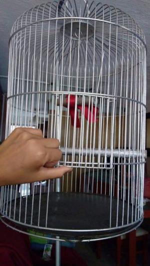 Jaula para pájaros o periquitos