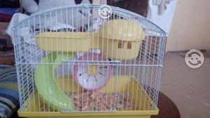 Oferta! Jaulas para hamsters