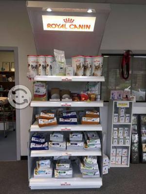 Alimento Royal Canin Croqueta Premium