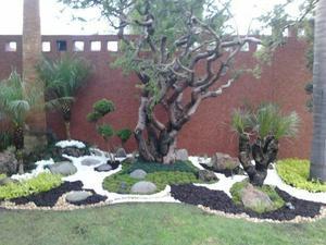 jardinería general
