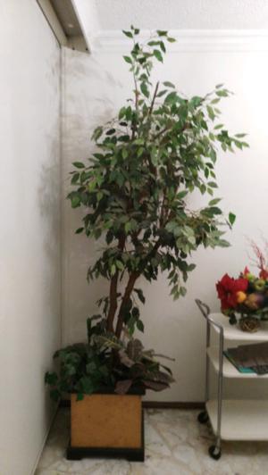 Arbol decorativo