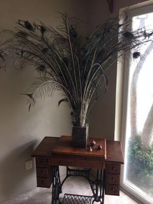Florero con plumas pavo real