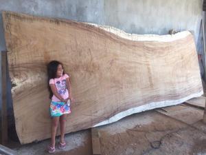 Piezas gigantes en madera de parota