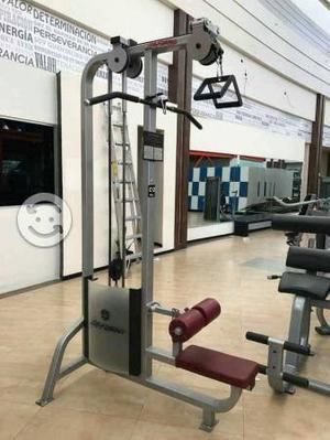 Máquina de espalda Life Fitness pro series
