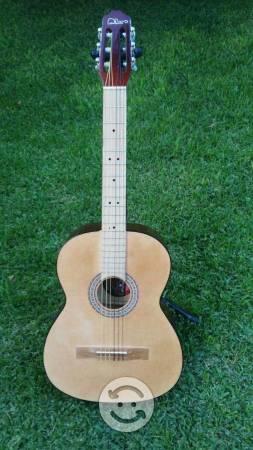 Guitarras y guitarra electroacústicas y acústicas