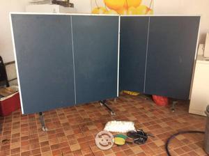 Mesa profesional de Ping Pong
