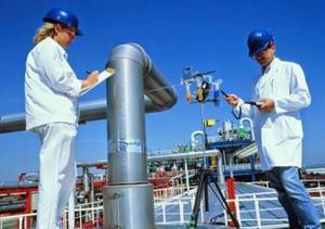 Seguridad e higiene industrial (cursos de capacitación)