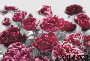 Foto mural Flores varias, Importados Komar