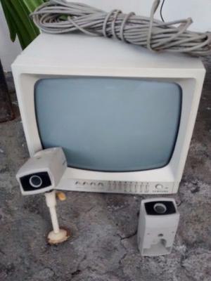 2 cámaras de vigilancia y monitor monocromático para