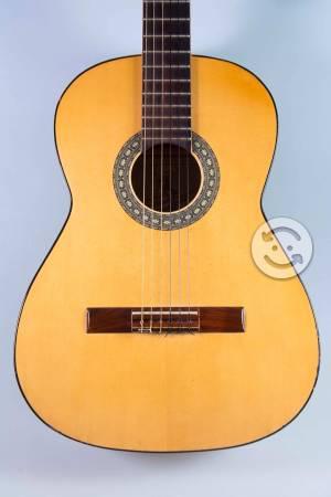 Guitarra acústica Virtuosa