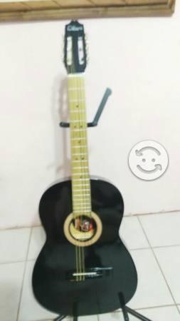 Guitarra acústica y Guitarras