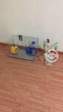 Jaula para Conejo o hurón y accesorios