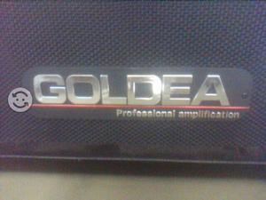 Bonito amplificador para guitarra Goldea de 40 w