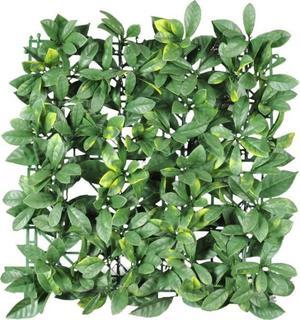 Follaje plantas muro verde enredaderas posot class for Plantas muro verde