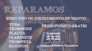 Reparacion de Instrumentos de Viento Puerto Vallarta