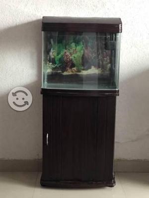 Pecera vidrio curvo