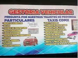 GESTORIA VEHICULAR CDMX