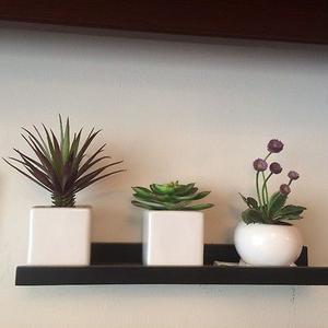 Macetas pequeñas con cactus artificiales