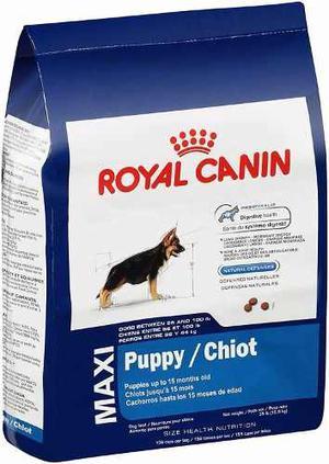 Royal Canin Maxi Puppy Y Adulto kg Alimento Premium
