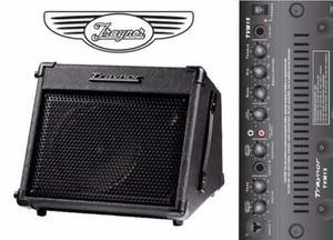 Amplificador Portatil De Guitarra Y Voz Recargable Traynor