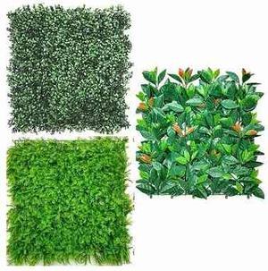 Follaje tipo hiedra para muro barda y 0 reja posot class for Plantas muro verde