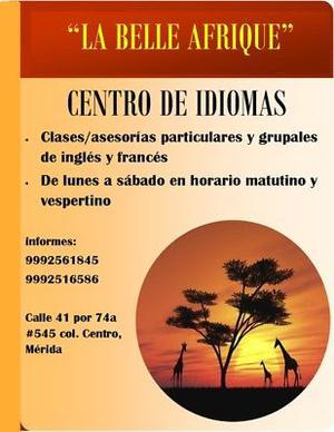 CLASES Y ASESORIAS DE INGLES Y FRANCES,