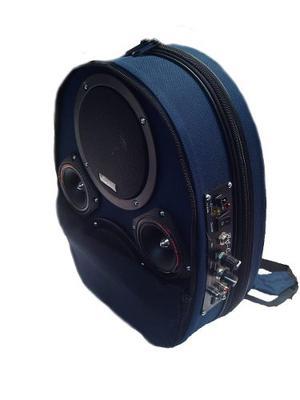 Amplificador Portatil Recargable 800w Con Bluetooth Y Usb