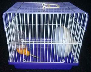 Jaula Cuadrada Chica Para Hamster Accesorios Extras