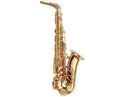 Saxofon Alto Mib Pioneer Laqueado Llave Fa Con Estuche