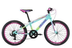 Bicicleta Alubike K20 Girl Rodada 20 Y 7 Velocidades