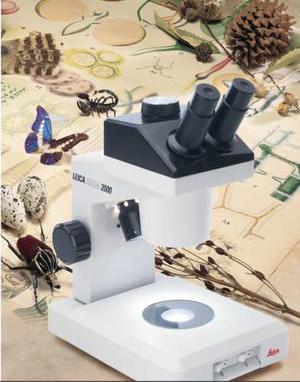 Microscopio Estereoscopio Leica Zoom  Perfecto Cambio