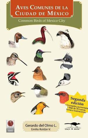 Libro Aves Comunes De La Ciudad De México 2da. Edición